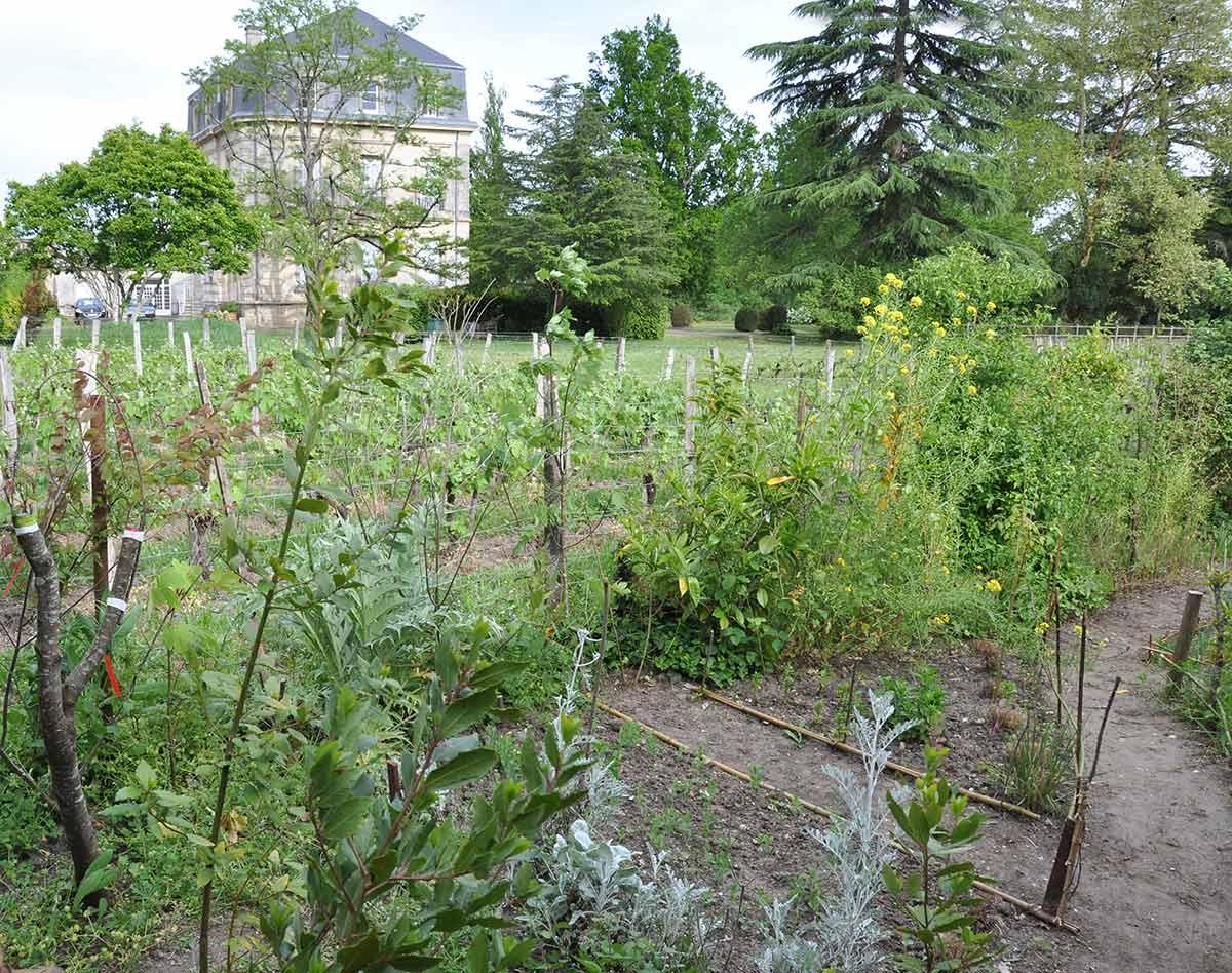 Jardiner les interstices